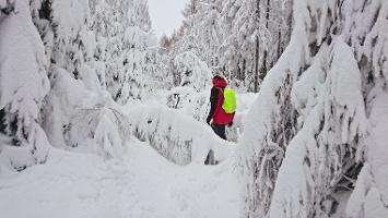 Foto Verschneiter Grenzweg Richtung Tyssaer Wände
