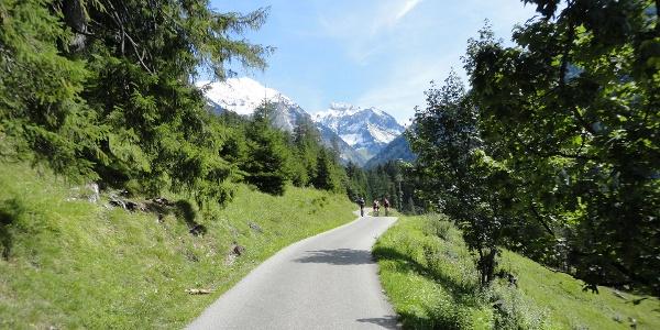 Breiter Radweg in Oytal bei Oberstdorf