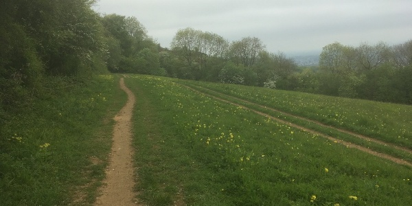 Cotswold Way onto Hartley Hill