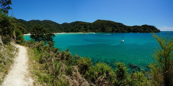 Wanderweg im Abel Tasman Nationalpark