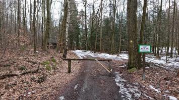 Foto Abzweig ins Knechtsbachtal
