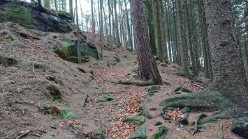 Foto Aufstieg zum Großstein