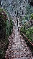 Foto Abstieg vom Kuhstallplateau