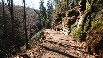 Foto Abstieg in Richtung Rathen auf dem Füllhölzelweg