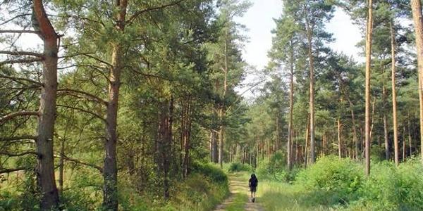 E6 European long distance path Baltic - Wachau - Adria
