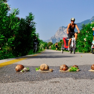 Aud 2 Räder mit Kindern den Radweg entlang