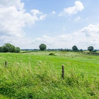 Wiesenlandschaft Raeren