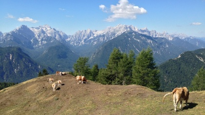 View from the ridge above Dovje towards Julian Alps