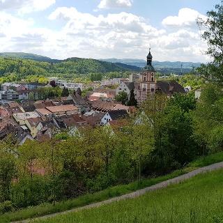 Blick vom kleinen Vitibuck auf die Tiengener Pfarrkirche und den Altstadtkern