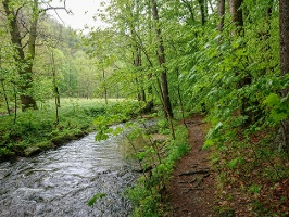 Foto Der Flößersteig führt oft sehr dicht an der Kirnitzsch entlang