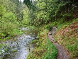 Foto Wunderbare Bachlandschaft im Kirnitzschtal