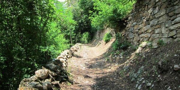 Levico Terme – Forte Colle delle Benne