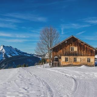 Hütte Sonderdach Bezau
