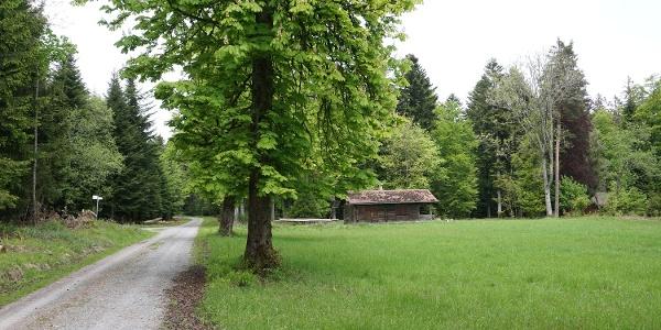 Der Pflanzengarten bietet sich als geeigneter Picknickplatz an.