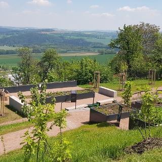 Blick auf den Kurfürstin-Anna-Garten