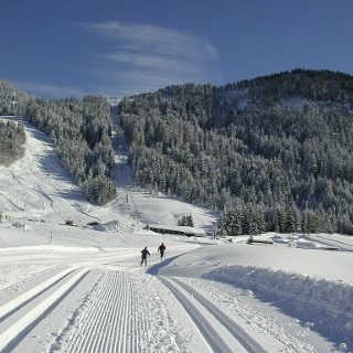 Langlaufen in Balderschwang