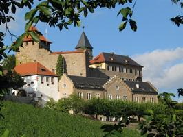 Arboretum Schloss Eberstein - Baumkundlicher Lehrpfad