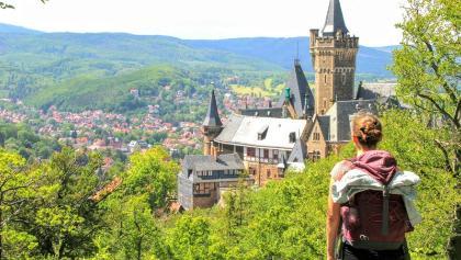 Toller Ausblick auf das Schloss