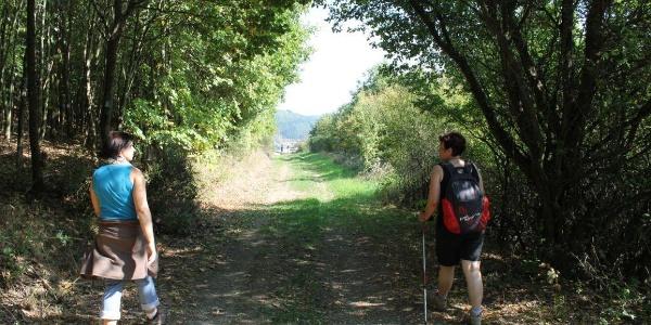 Wanderweg bei Glanbrücken