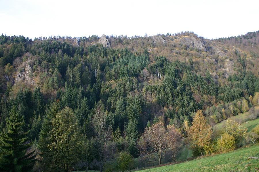 Ottenhöfen im Schwarzwald - Mühlendorf-Tour