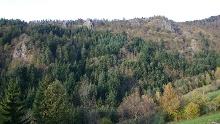 Ottenhöfen - Mühlendorf-Tour
