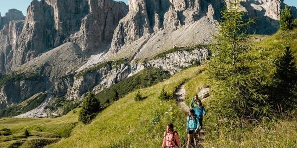 Panorama Passo Gardena