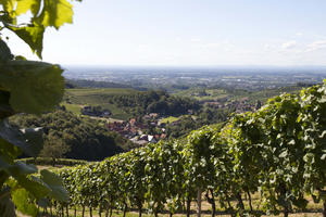 Laufbach - Tour (20)
