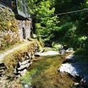 Foto von : Wandertour in der Vulkaneifel: Tal der wilden Endert Ulmen-Cochem •  (03.06.2019 09:35:58 #1)