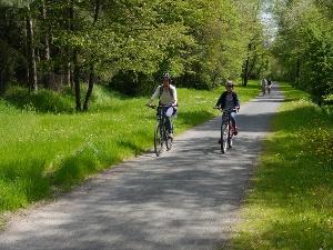Foto Radweg auf der ehemaligen Kleinbahntrasse in Freital (Edgar-Rudolf-Weg)