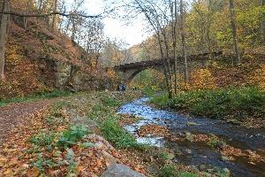 Foto Herbst im Rabenauer Grund