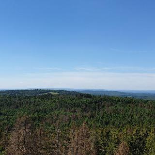 Aussicht vom Turm