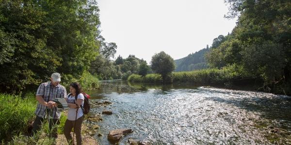 Der Fluss Neckar durchs Neckartal