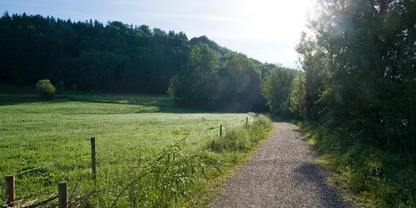 Wanderweg am Waldrand bei Rotkreuz