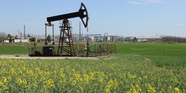 Olajhimba Nagylengyel határában - háttérben az ormándlaki főgyűjtő, ahol a kitermelt kőolajat finomításra készítik elő