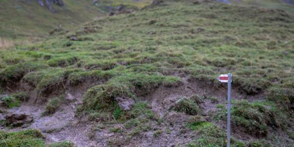 Abzweig ins Grüne: leicht zu übersehen (4)