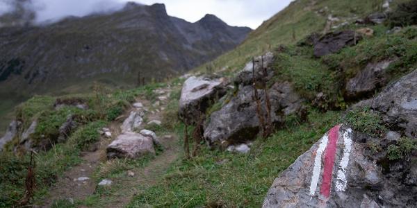Der Weg führt in Kehren stetig bergauf (5)