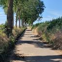 Tolle Wege an Feldern vorbei.