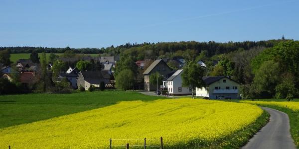 Bald ist Hannebach erreicht, hier treffen wir auf die Brohlbachquelle.