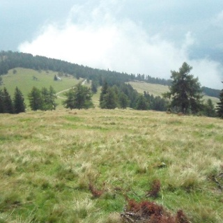Ausblick von der Gmoa-Alm