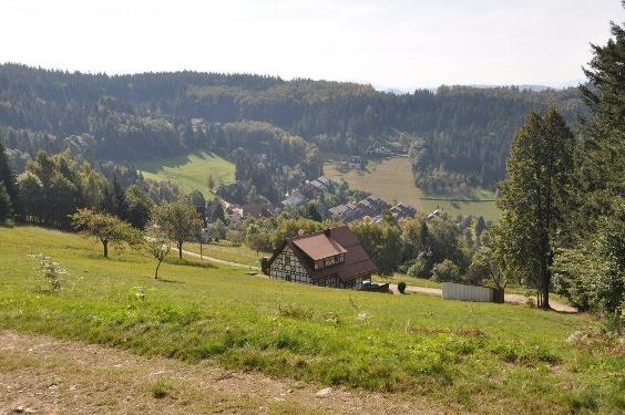 Kleine Laufbachtal-Tour (5)