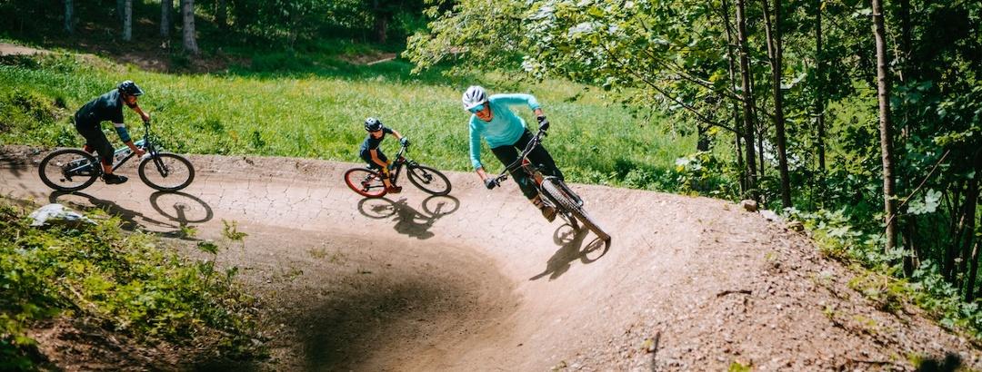 Lowgartner Trail