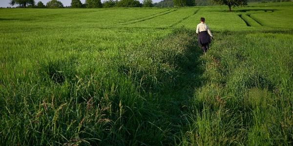 Durch die Wiesen im FFH-Gebiet