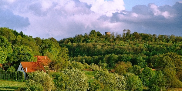 Blick auf die Burg Ravensberg