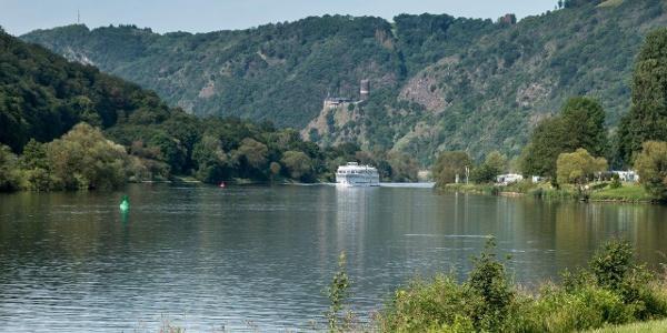 …  genießen kurz das moselländische Flair und den Blick auf Burg Bischofstein …