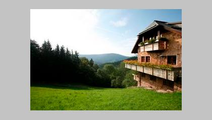 Wandern schwarzwald singles
