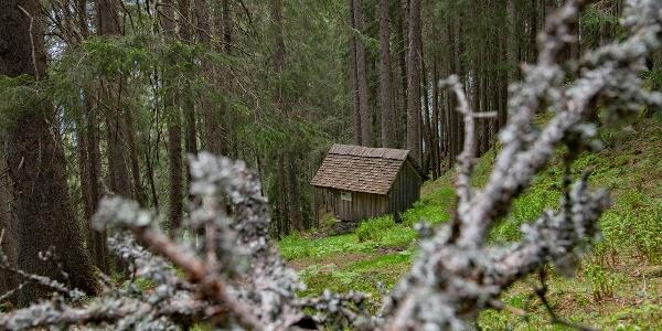 Bruderhüsli im Dalaaser Wald