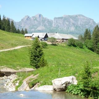 Alp Kohlschlag vor Bergkulisse