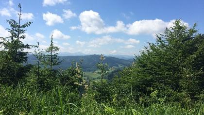 Tolle Ausblicke auf die Allgäuer Alpen