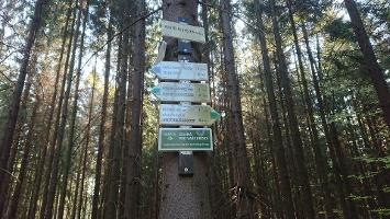 Foto Wegweiser ins Weißbachtal