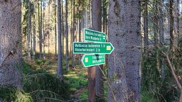 Foto Wegweiser nach Hinterhermsdorf